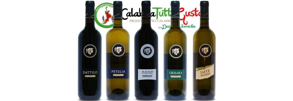 Migliori Vini Calabresi